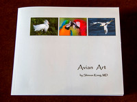 Avian Art -- a Book